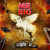 MR. BIG - WHAT IF... - CD